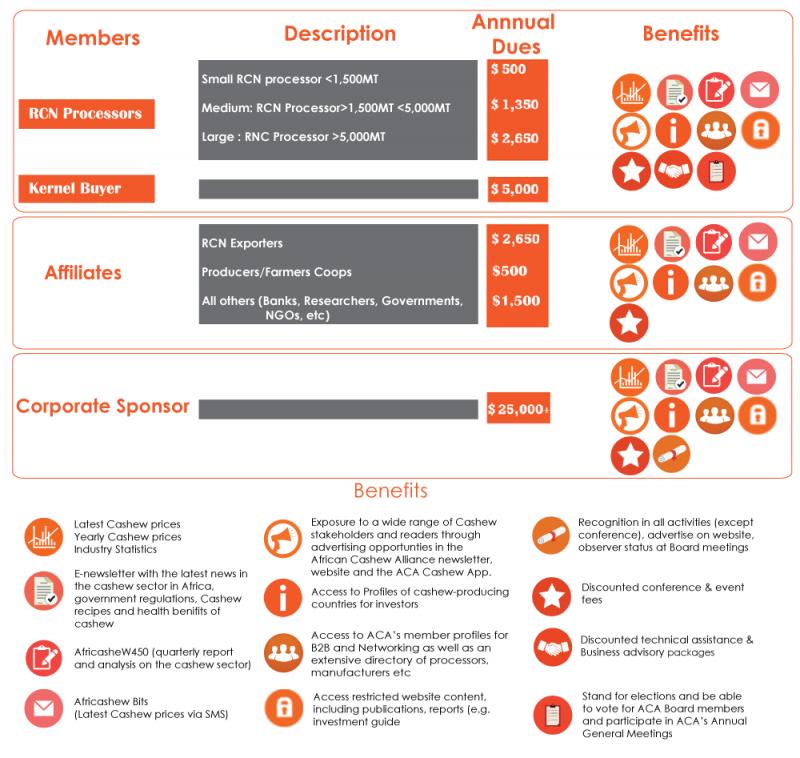 ACA Members Categories