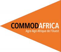 CommodArique Logo